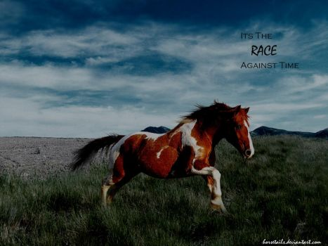 Race against time by Horsetails