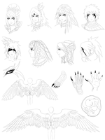 Avian race design chart by FireEagleSpirit