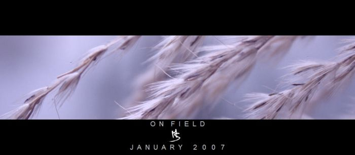 ON FIELD I by science10