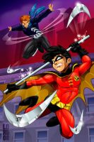 Robin and Boomerang by lordmesa