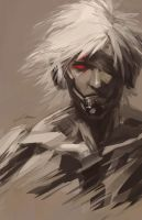 Raiden 2014 by Alex-Chow
