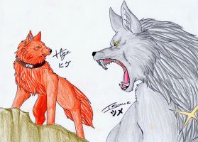 Wolfs Rain_Hige and Tsume by WhiteSpiritWolf