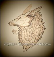 .:: Foxii - Sketch ::. by Windspirit-Aquaeris