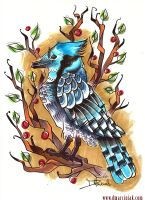 Bluejay by dmillustration