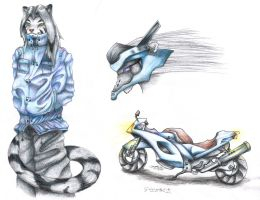 Tail Chasers Entry: Dox by jan-michael9500