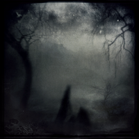 Whose Woods Are These III by intao