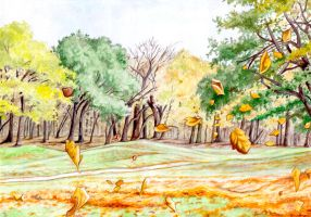 March End Common by peet