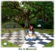Alice In Wonderland by scarcy