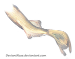 Mermaid Tail 06 (White Koi) by DeviantRoze