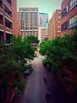 Tulane Hosptial Street View, New Orleans 4 by AshleyDay44