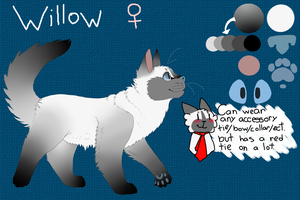 Willow Reference sheet by iPheline