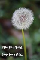 Weed or Wish? by Rjet33