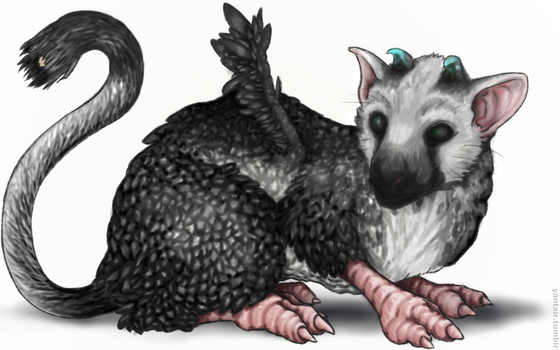 Trico by bacon-tits