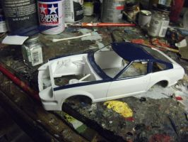 Almost done painting! by vash68