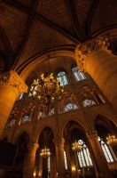 Inside Notre Dame Cathedral 2 by DanielleMiner