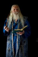 2014-08-01 Wizard Blue 12 by skydancer-stock
