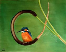 Kingfisher2 by WendyMitchell