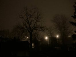 Foggy winter night by AmberLynn26