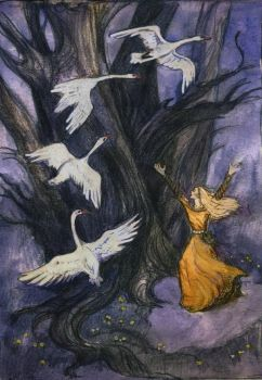 the wild swans by kakao-bean