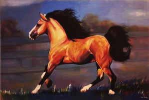 Horse 1 by RoniMilla