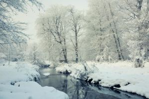 Minnowburn River, Winter 2010 by Gerard1972