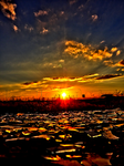 Broken Glass Sunset -HDR- by IoannisCleary