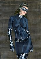 CatWoman TDKR Color by HQ-Man