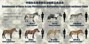 combination of Horse-4 by sinammonite
