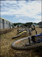 Lamotte.Beuvron.2008_XIII by Lec3H-All
