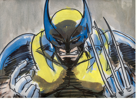 wolvie color by scarecrowhassan