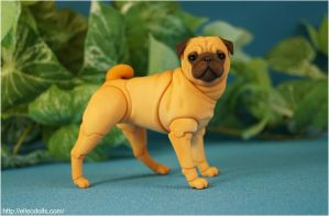 Pug Bjd Doll Dog 06 by leo3dmodels