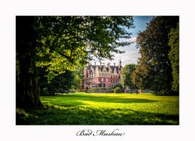 Bad Muskau Castle - the Afternoon by calimer00