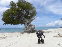 Where's Ironhide? Aruba by Letohatchee