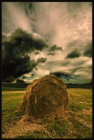 Clouds above the field by Juzma