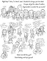The stupid hair quiz by The-Manticore