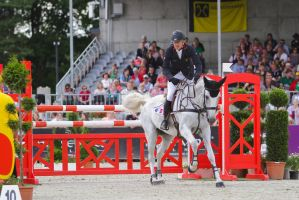Fleabitten Grey Mare 3DE Show Jumping 4 by LuDa-Stock