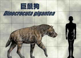 Dinocrocuta gigantea by sinammonite