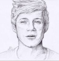 Niall Horan by winnieannie