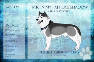 M!K In My Father's Shadow SDX WDCh CD by xMush-Kennelsx