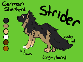 Strider Reference by Aevaln