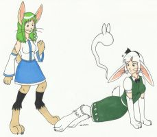 C: Sanae and Youmu rabbit TF by cqmorrell