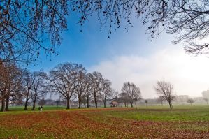 Autumn at Finsbury Park by dynamick