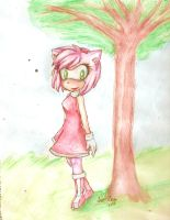 Amy Rose by Liittlemadness