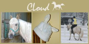 Custom Hat - Cloud by DSL-Devin