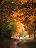 Polish colors of autumn by mistinesseye