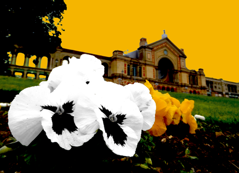 Beyond The Grounds of Ally Pally by RyaniteDesign