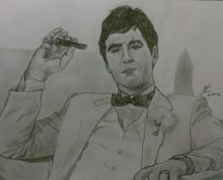 Tony Montana by plaidfox24