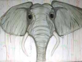 Elephant Watercolor by Brieana