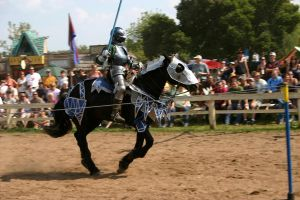 Jousting - Charge 6 by Furaha015