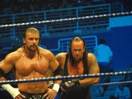 Triple H and the Undertaker by Kammerice